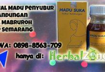 Jual Madu Penyubur Kandungan Al Mabruroh Di Semarang