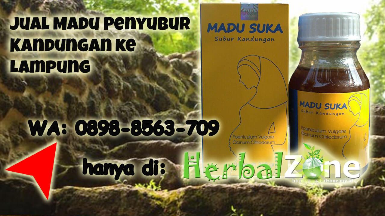 HerbalZone Menjual Madu Penyubur Kandungan ke Lampung